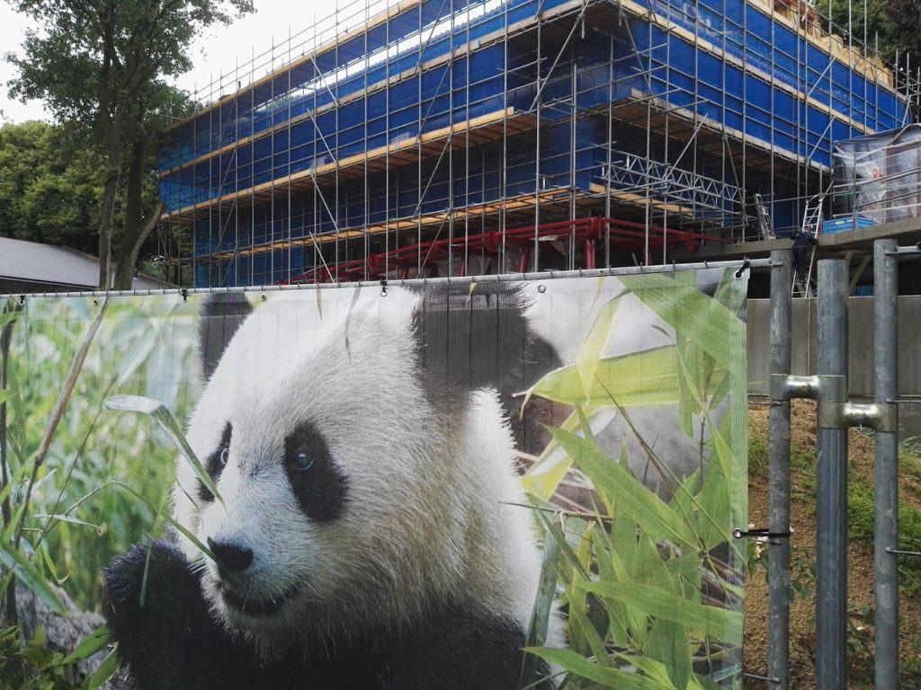 kung-fu-panda-3-verslag-ouwehands-reuzenpanda-dvd-copyright-trotse-moeders-trotse-vaders-2