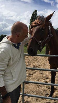 paard-foto-copyright-trotse-vaders-frank